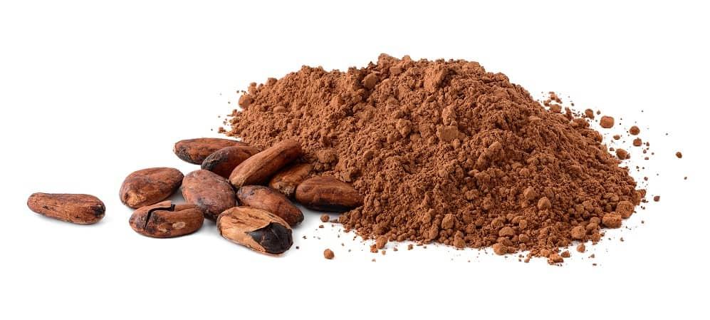 cocoa powder vegan